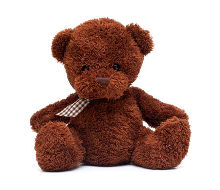 oso negro: el oso de peluche aislados sobre fondo blanco