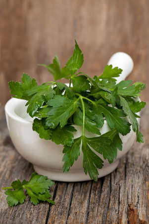 parsley in white mortar on wooden surface photo