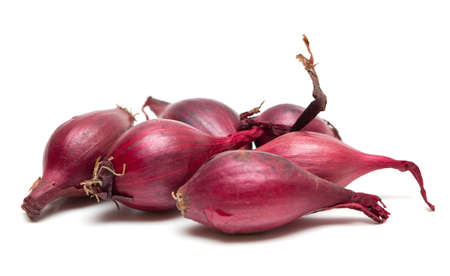 red onion seed isolated on white photo