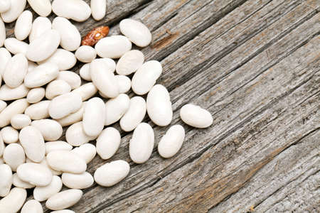 white beans on wooden surface Stock Photo - 14253410