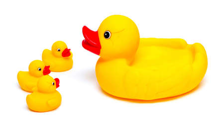 rubber ducks isolated on white photo