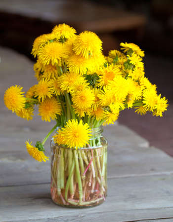 bouquet of dandelions on wooden table  photo