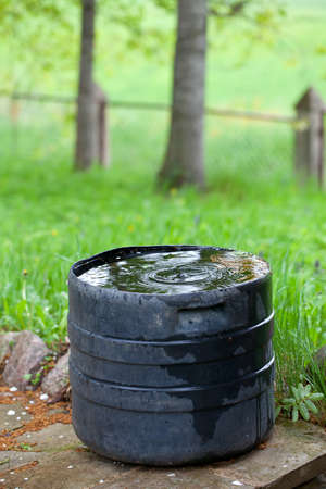 plastic container collecting rain water for plant watering photo