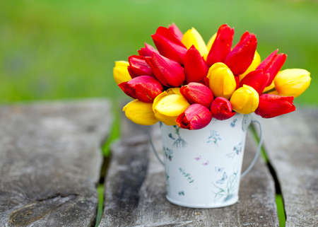 red and yellow tulips in a bucket on garden table photo