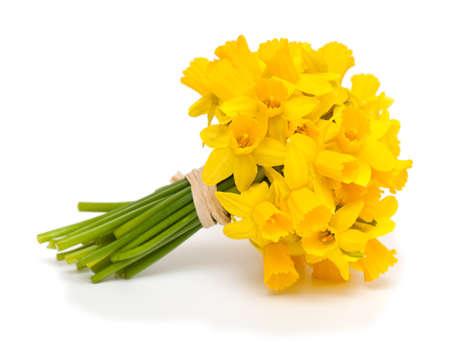 bouquet de fleur: liés narcisses isolés sur fond blanc