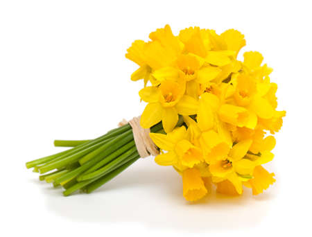 flower bouquet: tied narcissus flowers isolated on white background