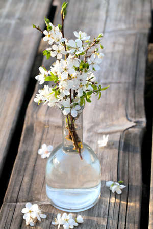 spring blossoms in glass vase on wooden surface photo