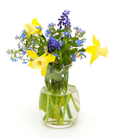 Bouquet of spring flowers on white background Stock Photo - 14253080