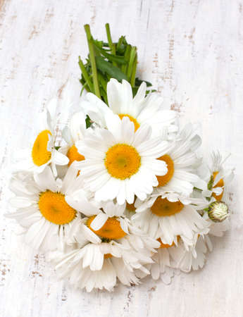 chamomile flowers on wooden table photo