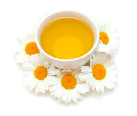 chamomile flower: camomile tea isolated on white