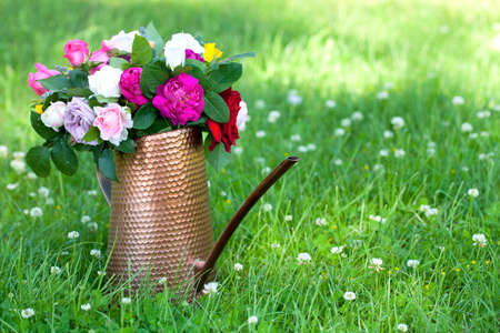 pitcher with different roses on grass photo