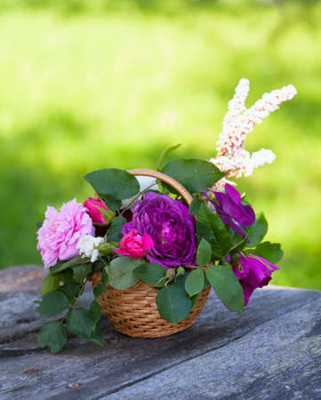 roses in basket on garden table photo