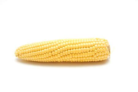 fresh corn cob over white photo