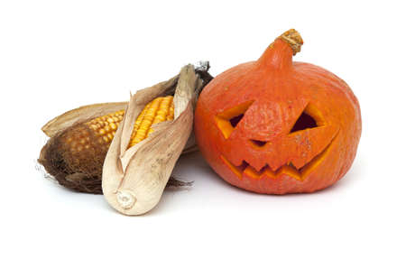 angry pumpkin and dired corn cobs on white background photo