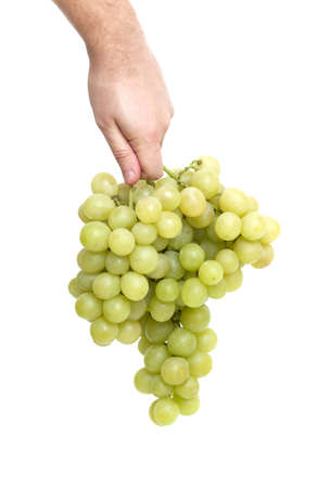 hand holding a bunch of ripe green grapes on white background photo