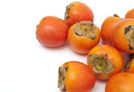 ebenaceae: persimons