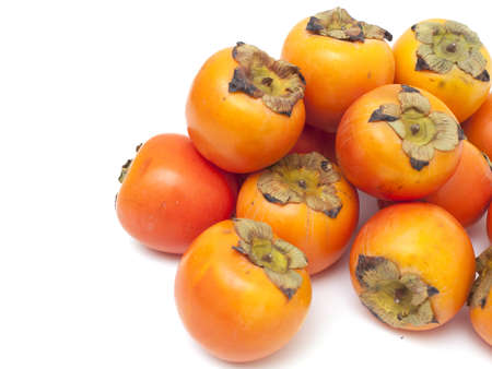 ebenaceae: persimmons and empty space for your text