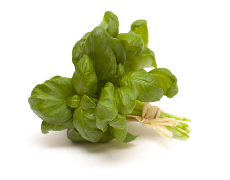 tied bunch of basil isolated on white background photo
