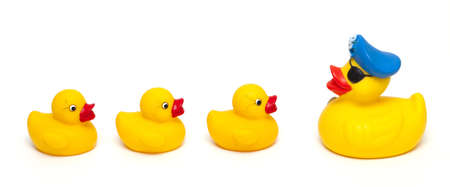 rubber pirate and baby ducks isolated on white background photo