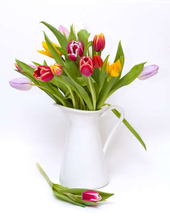 vase with colorful tulips on white background and one flower on a side Stock Photo - 14463997
