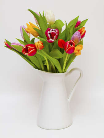 vase with colorful tulips on white background  photo