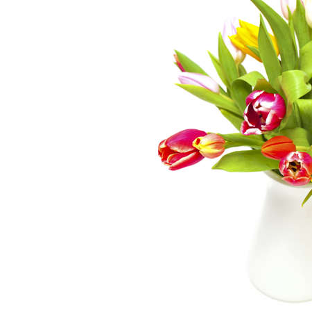 colorful tulips in vase and empty space for your text Stock Photo - 14463909