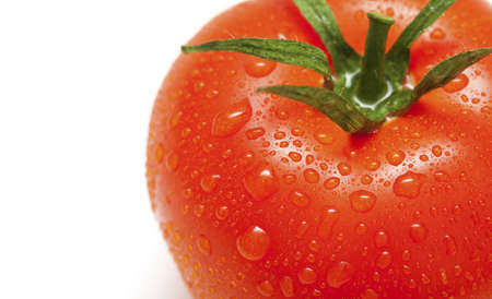 close-up of tomato with water drops and empty space for your text photo