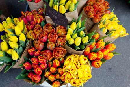 tulips on flower market