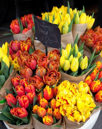 tulips on flower market photo