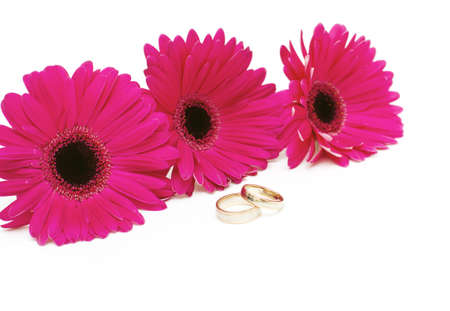 three gerbera and weddding rings photo