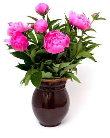 vase of flowers: vase with peonies isolated on white background
