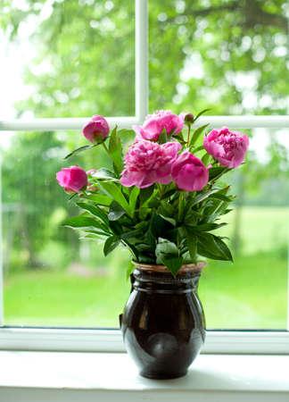 pfingstrosen: Vase mit Pfingstrosen