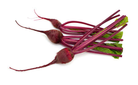 beet root over white photo
