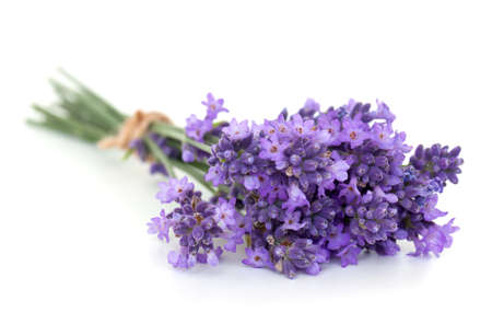 lilac flower: bunch of lavender isolated on white Stock Photo
