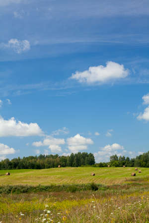 landscape with round bales and beautiful sky photo