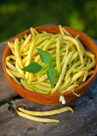 yellow kidney beans in a bowl on wooden table photo