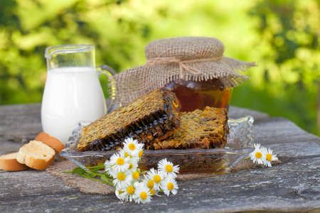 fresh honey combs with milk and bread photo