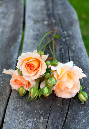 beautiful fresh roses on wooden background