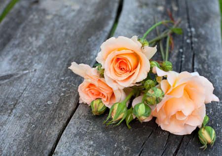 beautiful fresh roses on wooden background photo