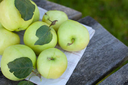 fresh apples on wooden table photo
