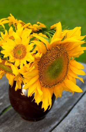 sunflowers on wooden table in the garden photo