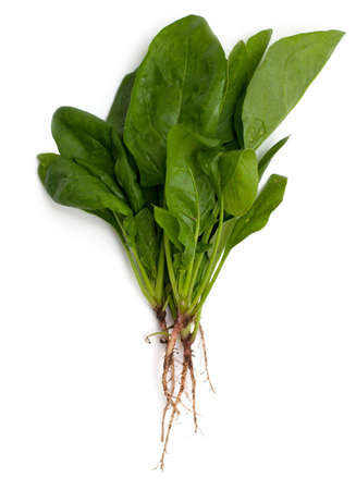 spinach with roots isolated on white background