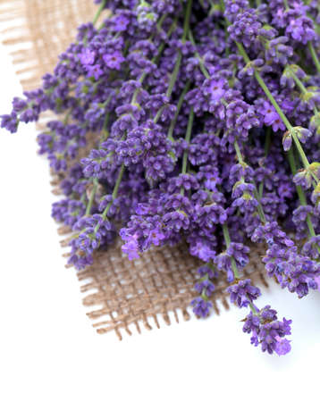 medicinal herb: lavender on burlap