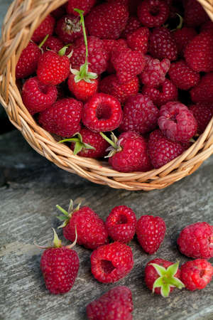 fresh raspberries in a basket photo