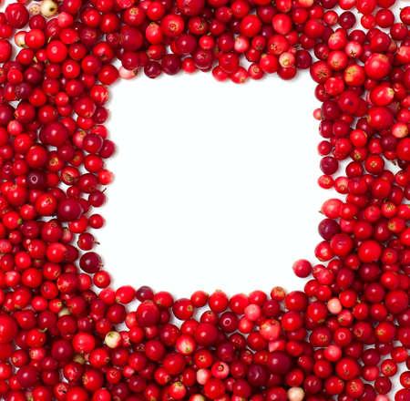 arandanos rojos: marco hecho de los ar�ndanos Foto de archivo