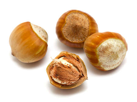hazelnut close up isolated on white background Stock Photo - 15326324