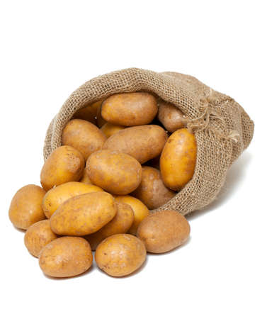 potatoes spilling from burlap bag isolated on white photo
