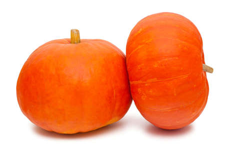 two pumpkins isolated on white background photo