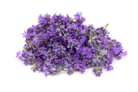 lavender: lavender flowers Stock Photo