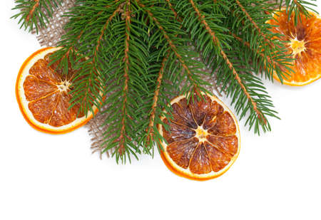 fir branch and dried oranges, empty space for your text photo